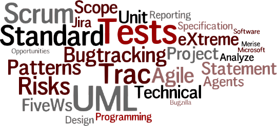 Trac/Jira/Bugzilla — Agile software development — eXtreme Programming — Basics of Scrum — UML — Progress reports — Project documents (Scope, Technical Specifications, QA) — Risks & opportunities analysis — Design Patterns — Agent oriented programming — Microsoft Project & similar